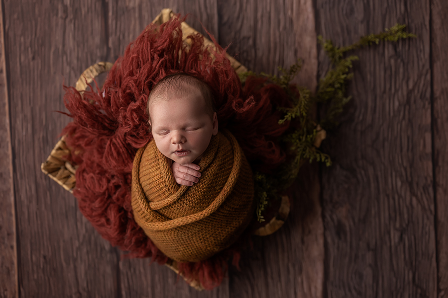 best baby photographers in london ontario