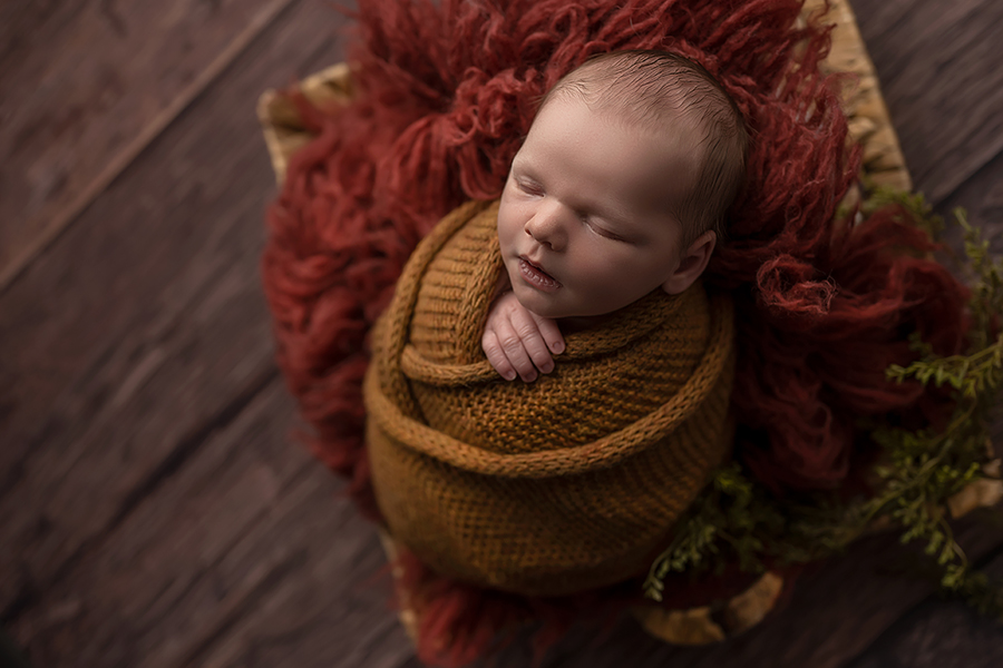 baby photography in london ontario